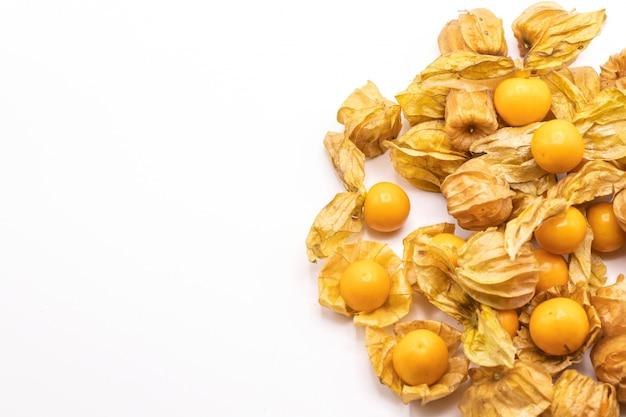 L'uva spina di capo fruttifica (peruviana del physalis) isolato. comunemente chiamato goldenberry, golden berry, pichuberry.