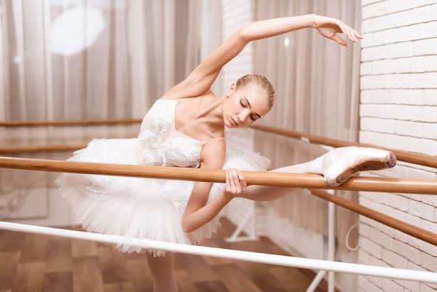 La ballerina professionista prova vicino alla sbarra di balletto.
