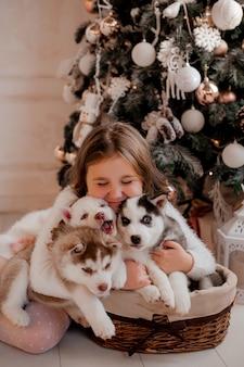 La bambina che gioca con i cuccioli husky si avvicina all'albero di natale