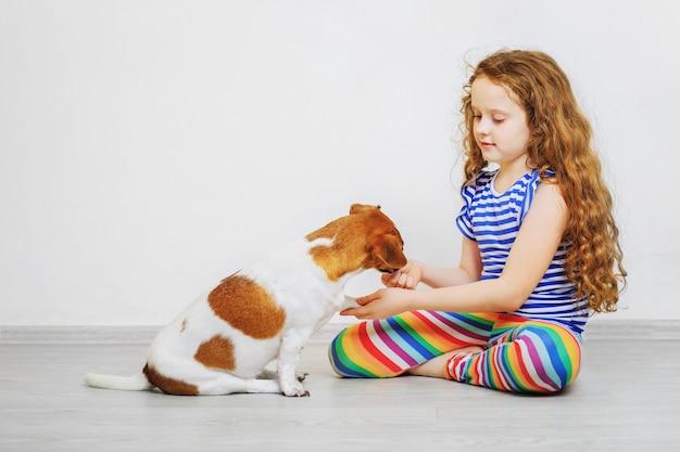 La bambina riccia sta addestrando il cane jack russel terrier.