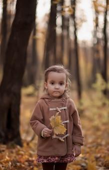 La bambina su un cappotto marrone tiene la foglia di acero all'aperto