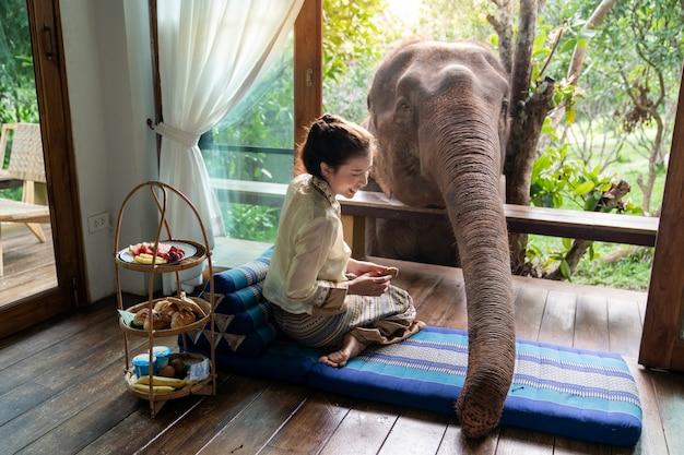 La bella donna dell'asia si siede sul balcone di legno e nutre l'elefante.