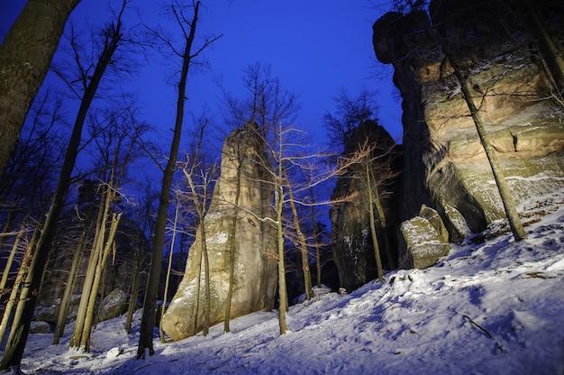 La bella foresta di montagna e la grande luce dipinse massi rocciosi