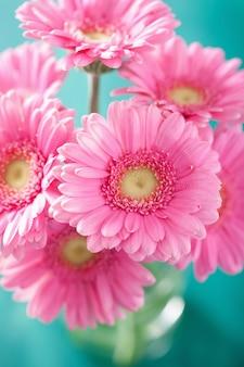 La bella gerbera rosa fiorisce il mazzo in vaso