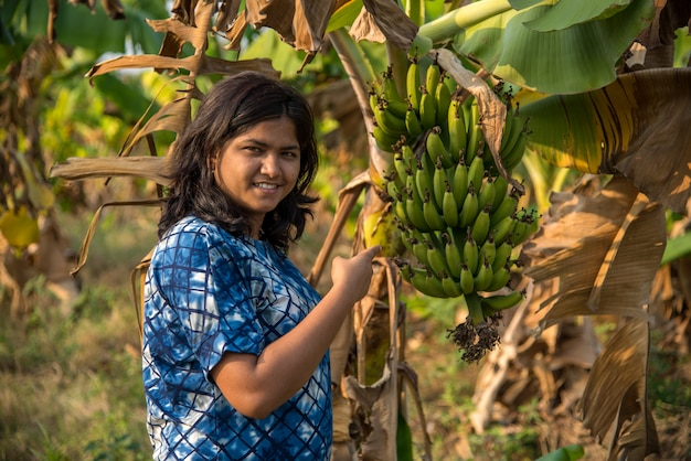 La bella lavoratrice agricola esamina o osservando o tenendo la frutta della banana sull'albero ad un'azienda agricola organica. sorriso volto di un contadino in anticipo nel campo dell'azienda agricola di agricoltura.