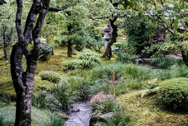 La bella vista pacifica sul piccolo lago con rocce, piccolo giardino giapponese