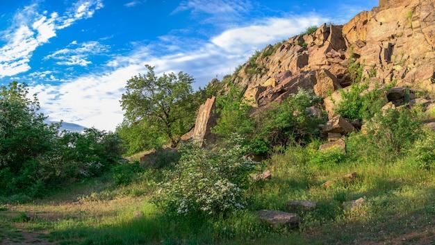 La bellezza della natura a migiya, ucraina