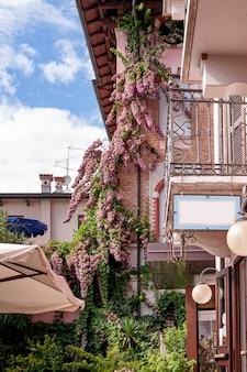 La bouganville in fiore avvolge le pareti della casa