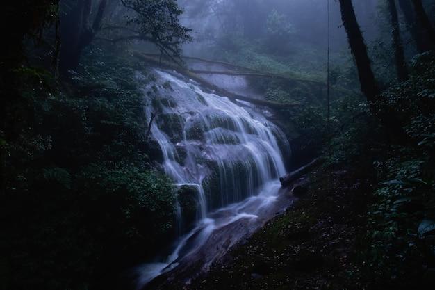 La cascata nella foresta spaventosa