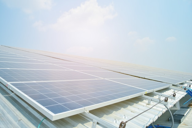 La cella solare nella fattoria solare con l'albero verde e l'illuminazione del sole riflettono