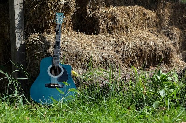 La chitarra sull'erba verde riposa su un ceppo