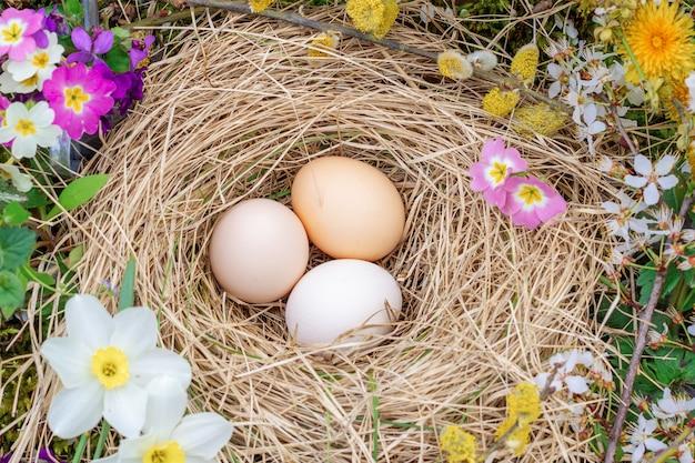 La composizione di pasqua delle uova in un nido di paglia, i ramoscelli del salice di fioritura e la primaverina fiorisce la vista superiore