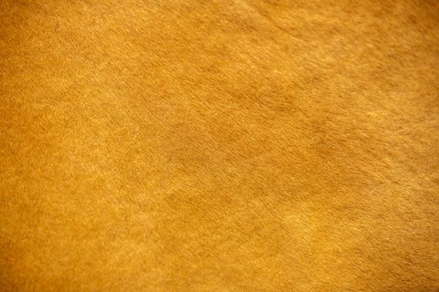 La consistenza della pelle di mucca, di colore rosso