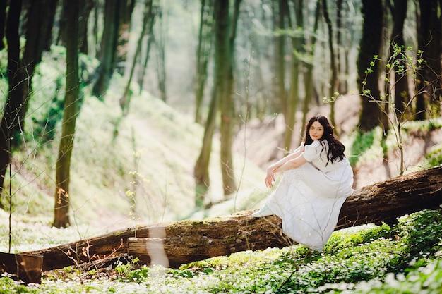 La donna in vestito bianco elegante si siede sull'albero nel giorno soleggiato