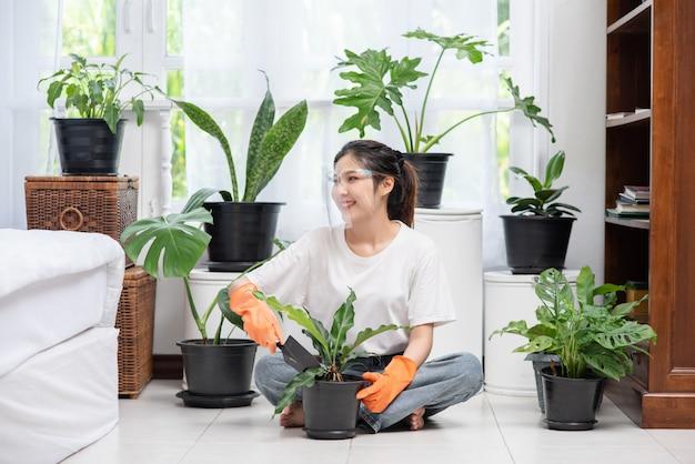 La donna indossava guanti arancioni e piantava alberi in casa.