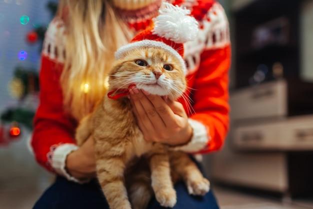 La donna mette il cappello di babbo natale sul gatto zenzero dall'albero di natale