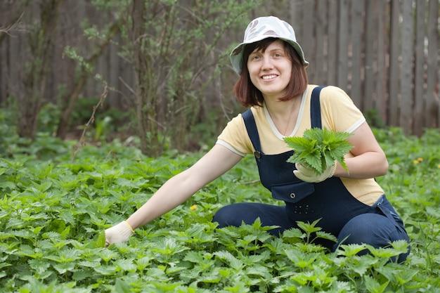 La donna raccoglie l'ortica