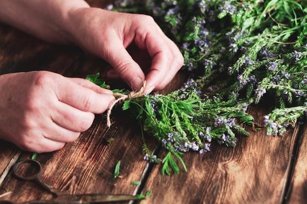 La donna raccoglie le erbe in inverno per il tè