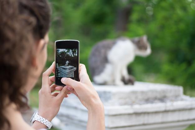 La donna scatta foto di gatto grigio al telefono nel parco
