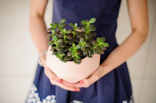 La donna sta tenendo un vaso con il fiore della serra