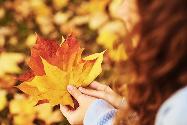 La donna tiene le foglie di acero colorate in mano nella sosta di autunno