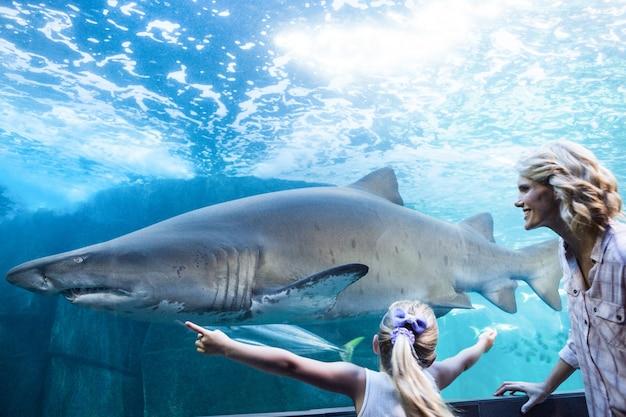 La figlia misura uno squalo con le sue mani