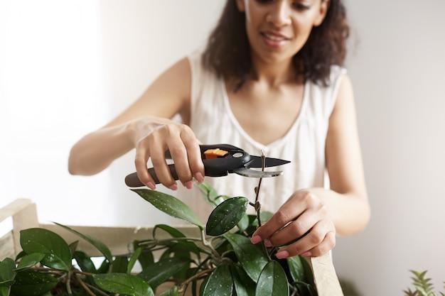 La giovane bella pianta da taglio femminile del fiorista stacca nello spazio della copia del posto di lavoro.