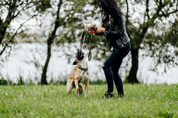 La giovane ragazza attiva che gioca e si diverte con il suo cane allegro veloce vivace furioso all'aperto di estate. proprietario femminile sveglio che cammina con il cucciolo pazzo della museruola comica. la donna gentile si prende cura del cane