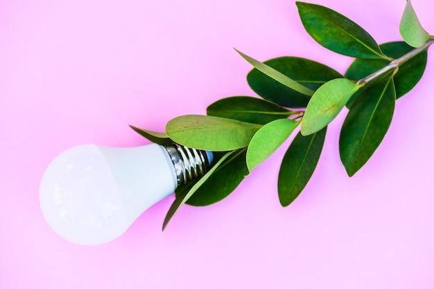 La lampadina su fondo rosa con le foglie verdi, pensa il concetto verde.