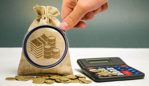La lente d'ingrandimento esamina la borsa dei soldi