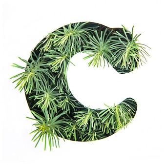 La lettera c dell'alfabeto inglese da erba verde