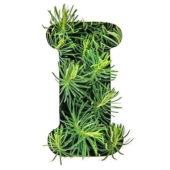La lettera i dell'alfabeto inglese da erba verde