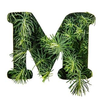 La lettera m dell'alfabeto inglese da erba verde