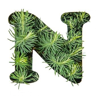 La lettera n dell'alfabeto inglese da erba verde