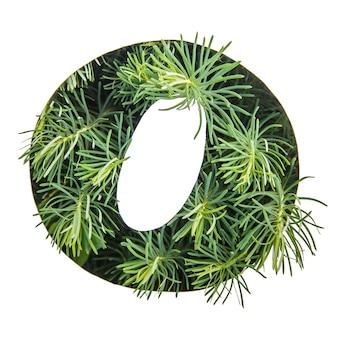 La lettera o dell'alfabeto inglese da erba verde