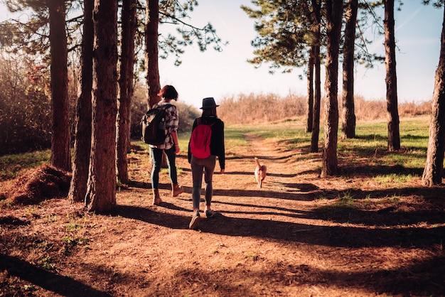 La madre e la figlia che fanno un'escursione con il cane sull'abetaia trascinano