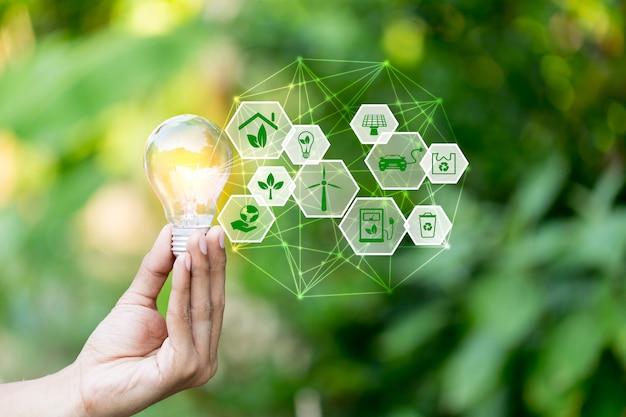 La mano che tiene la lampadina con le fonti di energia delle icone per rinnovabile, ama il concetto del mondo.