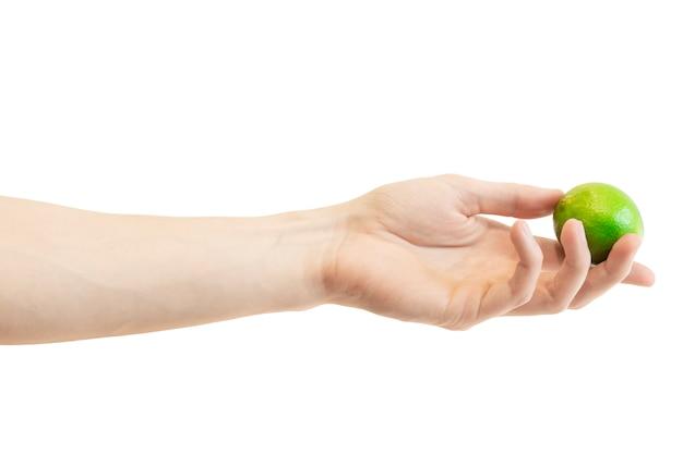 La mano degli uomini dà un'intera calce isolata su bianco
