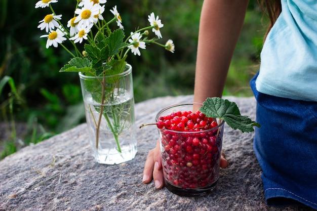 La mano del bambino che tiene un bicchiere pieno di ribes rosso in estate all'aperto in giardino