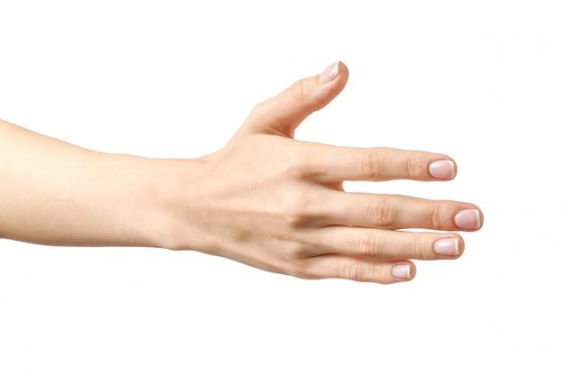 La mano della donna che è disposta a fare un accordo