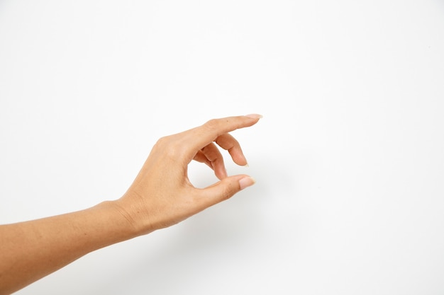 La mano della donna tiene qualcosa