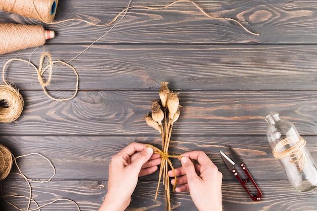 La mano della persona che lega i baccelli secchi del papavero con la corda vicino alla taglierina e alla bottiglia di vetro sullo scrittorio
