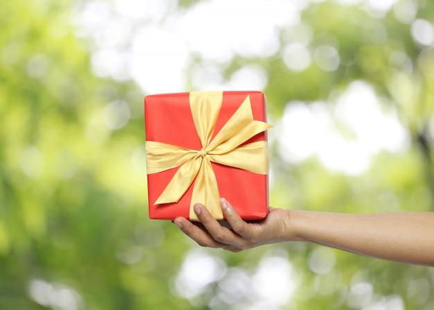 La mano delle donne che tiene un contenitore di regalo rosso sul fondo del bokeh di verde della sfuocatura.