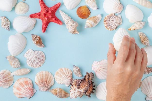 La mano delle donne tiene una conchiglia su un fondo blu dell'estate con differenti conchiglie e stelle marine