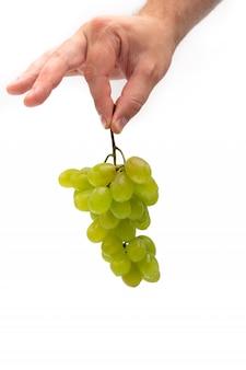 La mano di un uomo tiene un ramo di uva verde con gocce d'acqua