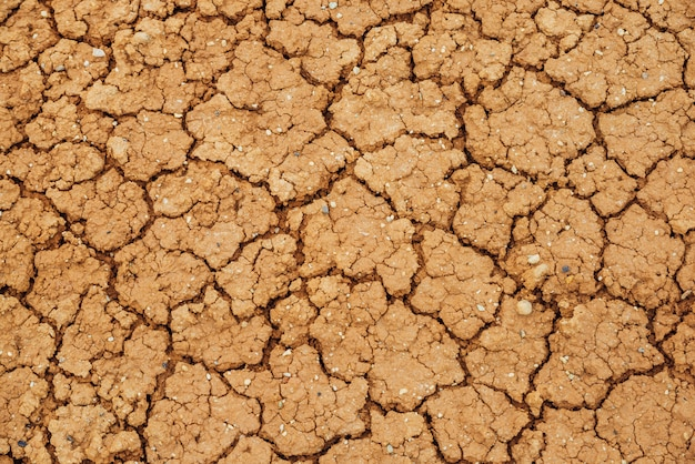 La natura ha spaccato le terre asciutte. texture naturale del terreno con crepe. superficie rotta dell'argilla del primo piano sterile del terreno incolto della terra asciutta. full frame per terreni con clima arido. deserto senza vita sullo sfondo della terra