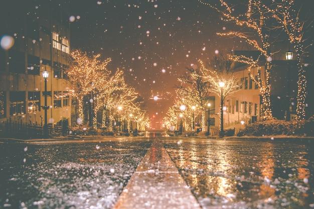 La neve sta cadendo, la luce notturna di christmas street tree e l'illuminazione hakodate harbour hokkaido, in giappone.