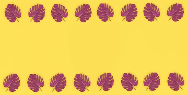 La palma tropicale monstera lascia le bugie su una carta colorata pastello.