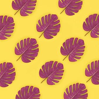La palma tropicale monstera lascia le bugie sul giallo pastello