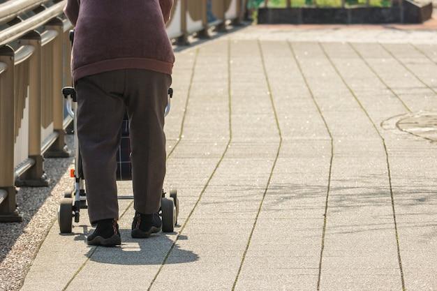 La parte posteriore della persona anziana che cattura un anziano porta la borsa a rotelle lungo la strada solitaria.